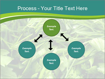 0000075618 PowerPoint Templates - Slide 91