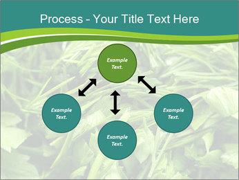 0000075618 PowerPoint Template - Slide 91