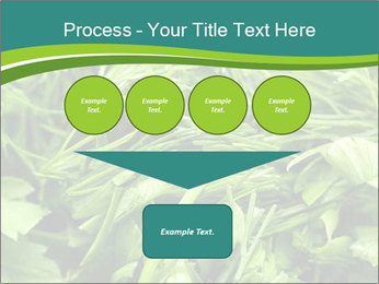 0000075618 PowerPoint Templates - Slide 93