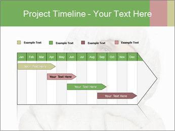 0000075623 PowerPoint Template - Slide 25