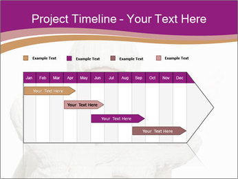 0000075624 PowerPoint Template - Slide 25