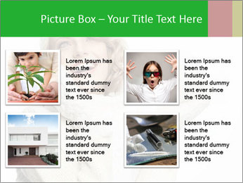 0000075627 PowerPoint Template - Slide 14