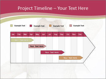 0000075633 PowerPoint Template - Slide 25