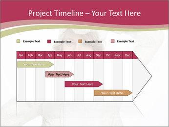 0000075633 PowerPoint Templates - Slide 25