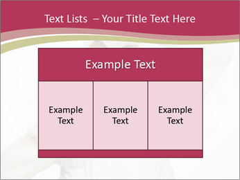 0000075633 PowerPoint Templates - Slide 59