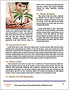 0000075634 Word Templates - Page 4