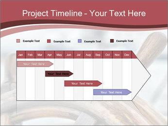 0000075644 PowerPoint Template - Slide 25