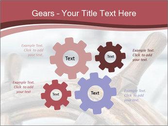 0000075644 PowerPoint Template - Slide 47