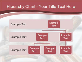 0000075644 PowerPoint Template - Slide 67
