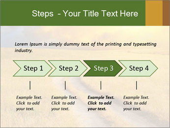 0000075647 PowerPoint Template - Slide 4