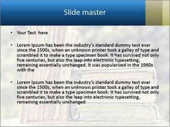 0000075675 PowerPoint Templates - Slide 2