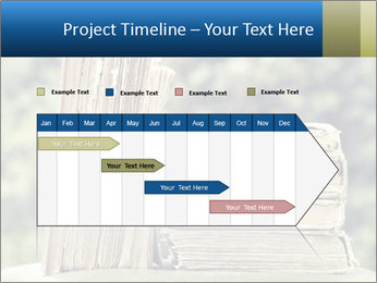 0000075675 PowerPoint Templates - Slide 25