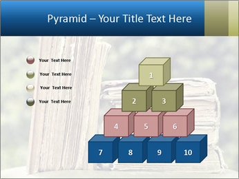0000075675 PowerPoint Templates - Slide 31