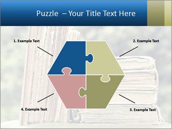 0000075675 PowerPoint Templates - Slide 40