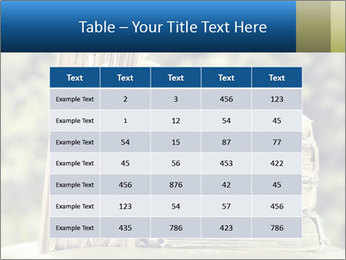 0000075675 PowerPoint Templates - Slide 55