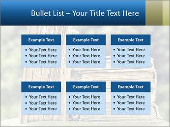 0000075675 PowerPoint Templates - Slide 56