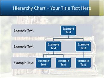 0000075675 PowerPoint Templates - Slide 67