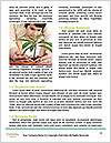 0000075678 Word Templates - Page 4