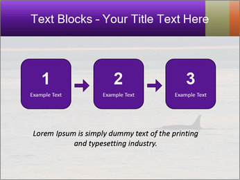0000075680 PowerPoint Template - Slide 71
