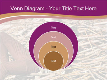 0000075688 PowerPoint Templates - Slide 34