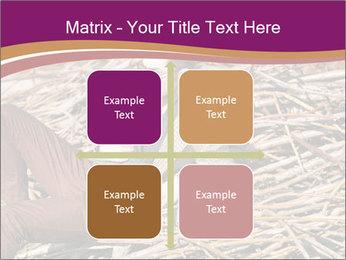 0000075688 PowerPoint Templates - Slide 37