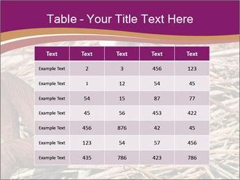 0000075688 PowerPoint Templates - Slide 55