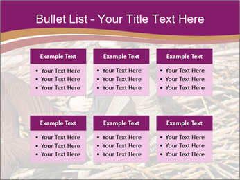 0000075688 PowerPoint Templates - Slide 56
