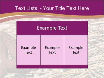0000075688 PowerPoint Templates - Slide 59