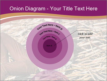 0000075688 PowerPoint Templates - Slide 61