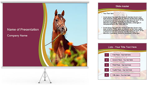 0000075697 PowerPoint Template