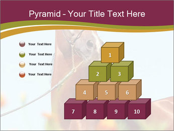 0000075697 PowerPoint Templates - Slide 31