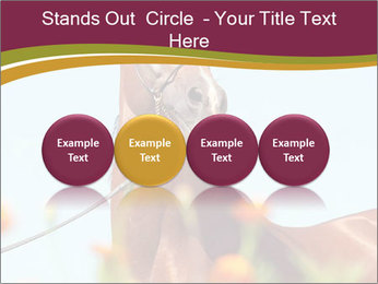 0000075697 PowerPoint Templates - Slide 76