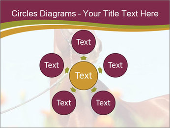0000075697 PowerPoint Templates - Slide 78