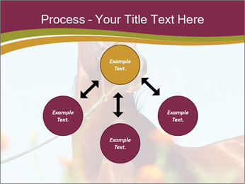 0000075697 PowerPoint Templates - Slide 91
