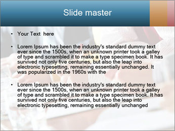 0000075709 PowerPoint Templates - Slide 2