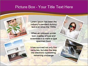 0000075726 PowerPoint Template - Slide 24