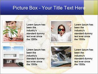 0000075728 PowerPoint Templates - Slide 14