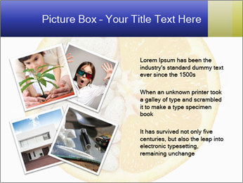 0000075728 PowerPoint Templates - Slide 23