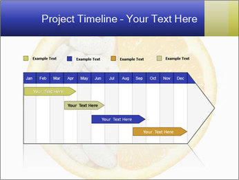 0000075728 PowerPoint Templates - Slide 25