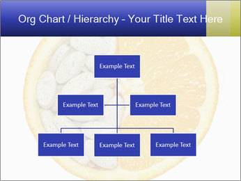 0000075728 PowerPoint Templates - Slide 66