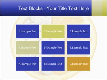 0000075728 PowerPoint Templates - Slide 68