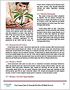 0000075731 Word Templates - Page 4