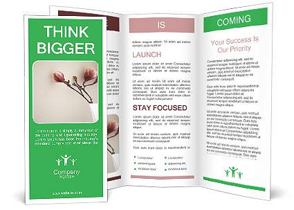 0000075739 Brochure Template
