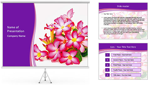 0000075755 PowerPoint Template