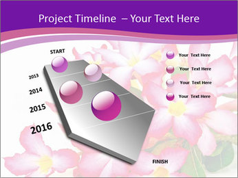 0000075755 PowerPoint Template - Slide 26