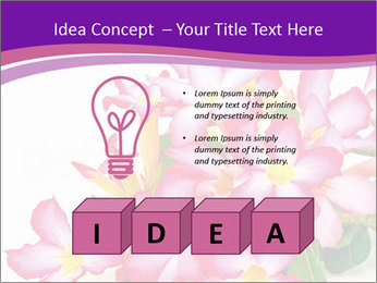 0000075755 PowerPoint Template - Slide 80