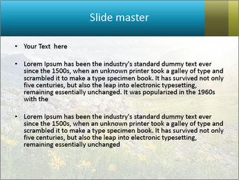 0000075764 PowerPoint Template - Slide 2