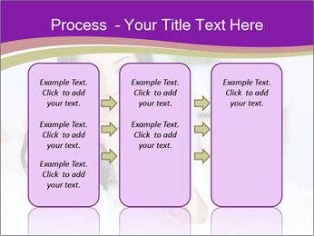 0000075766 PowerPoint Template - Slide 86