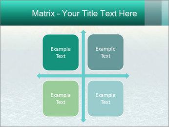 0000075771 PowerPoint Templates - Slide 37