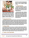 0000075781 Word Templates - Page 4